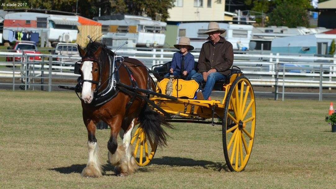 Clydesdale Spectacular